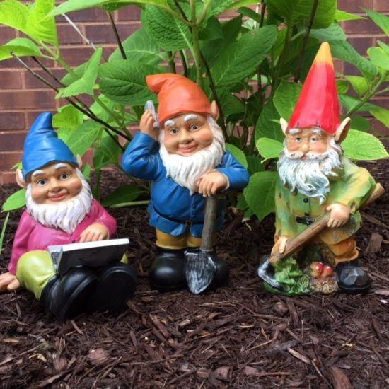 Find the Gnomes - Win Cash